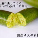 観音山フィンガーライム!沸騰ワード10で紹介されるキャビアフルーツはコレ?価格と味、購入方法は?