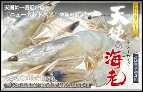 世界ふしぎ発見ニューカレドニアの天使のエビの通販やお取り寄せに価格は?味や使い勝手は?