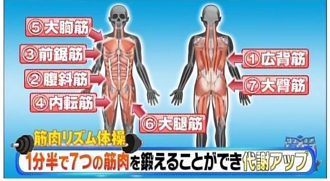 有吉ゼミの武田真治の筋肉リズム体操とは?消費カロリーは?基礎代謝アップ?